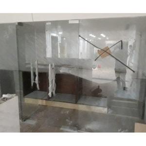 Cửa kính thủy lực TL01